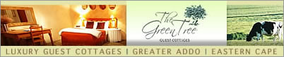 The Green Tree Guest Cottages Addo Eastern Cape