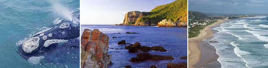 Garden Route Accommodation and Tourist Guide