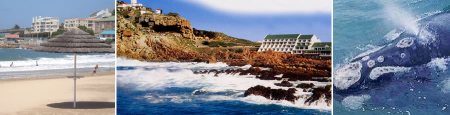 Knysna Accommodation and Tourist Guide